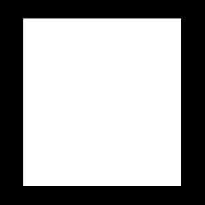 Zs Divine Espresso